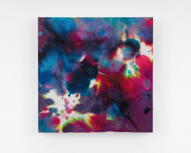 , 'Piezo_Flora_005 (Absorption Dyed Roses),' 2018, Ed. Varie