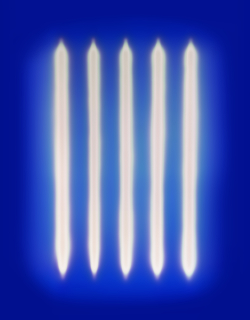 , 'It's Radiant Blaze,' 2014, Holden Luntz Gallery