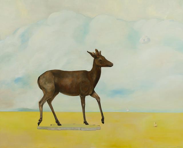 , 'Doe, Mysterious Cloud,' 2013, Richard Levy Gallery