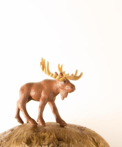 , 'Mushroom the Moose,' , ArtStar
