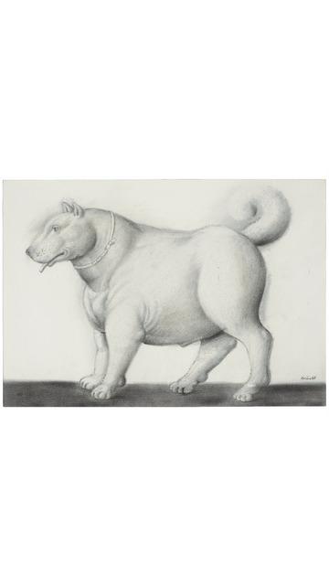 Fernando Botero, 'Dog ', 1988, Galería Duque Arango