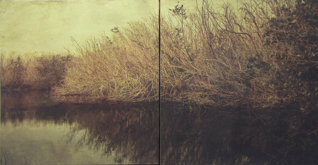 Dorothy Simpson Krause, 'Backwater', 2008, 571 Projects