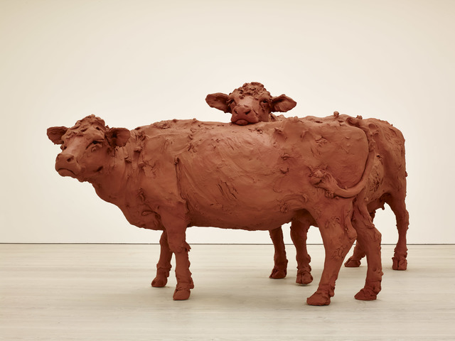 , 'Two Cows,' 2013, Saatchi Gallery