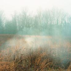 , 'Smoke Screen,' 2013, Mindy Solomon Gallery