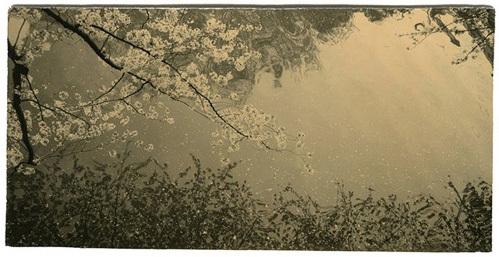 , 'BK0059,' 2014, Ira Stehmann Fine Art Photography