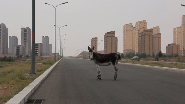 Liu Xiaodong, 'K.O. (still)', 2015, Video/Film/Animation, Film Still, Faurschou Foundation