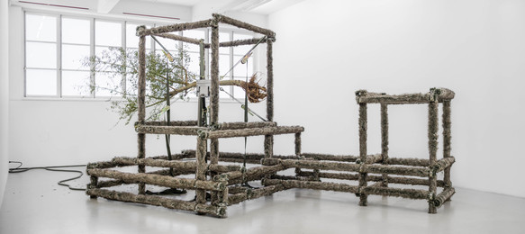 Siobhan Hapaska, 'a wolf, an olive tree and circumstances,' 2014, Andréhn-Schiptjenko