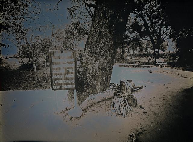 , 'Killing Tree, Choeung Ek Park,' 2017, Lisa Sette Gallery