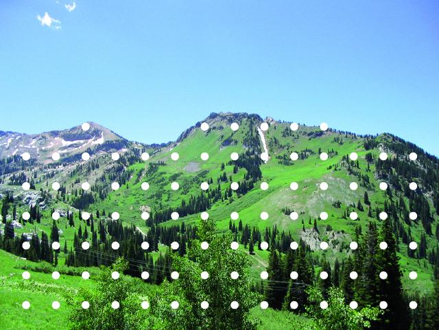, 'Snow,' 2005, Fonti
