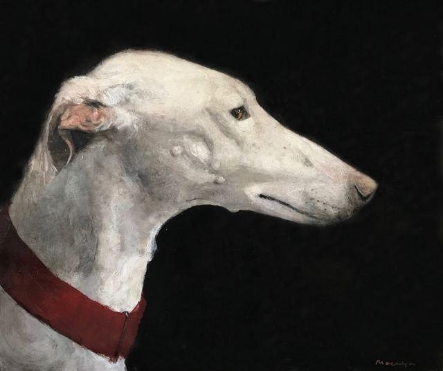 , 'Perro,' 2018, Galerie Arcturus