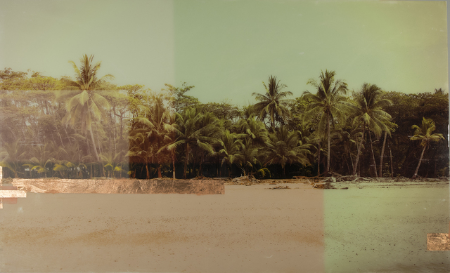 , 'Costa Rica Palms,' 2018, parts gallery