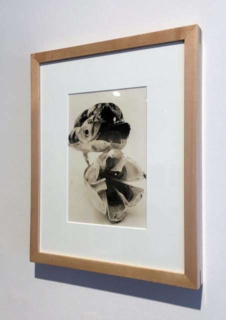 , 'Flora 2 Lith, Framed,' 2009, Duane Reed Gallery