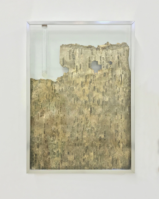 Sabrina Merayo Nuñez, 'Cortex caviar DNA', 2019, Gachi Prieto