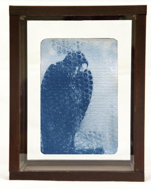 , 'Bird (1),' , Soho Photo Gallery