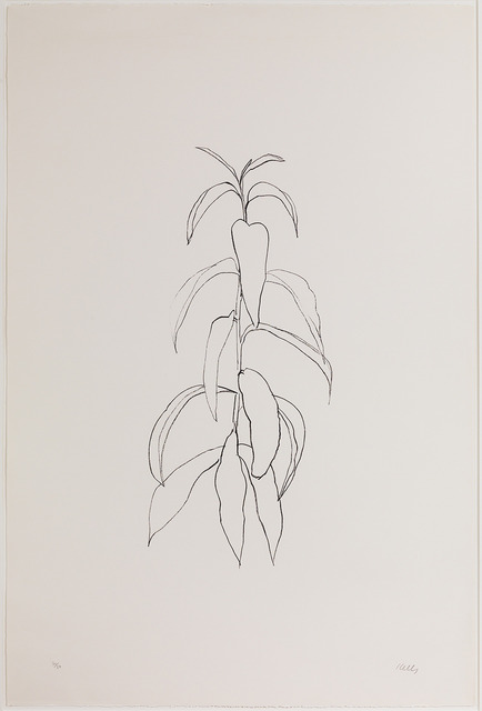 , 'Peach Branch,' 1973-1974, Susan Sheehan Gallery