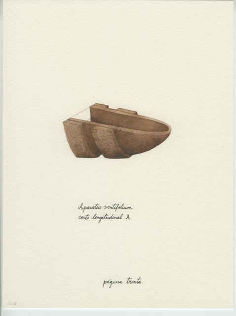 , 'Cadernos de Campo #9,' 2015, Carlos Carvalho- Arte Contemporanea