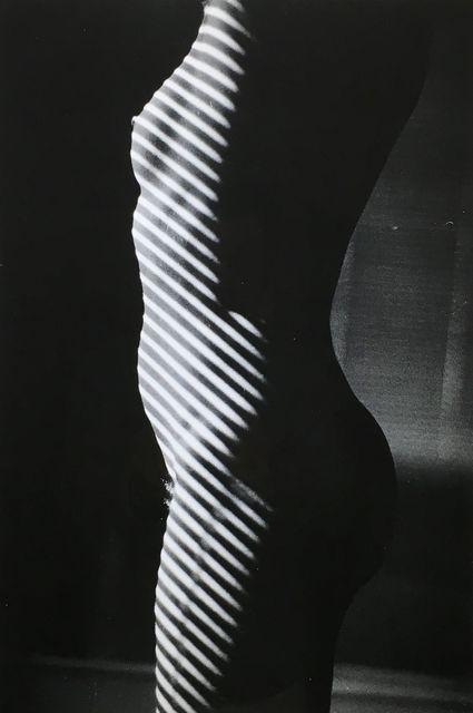 , '<Tropism>_L'anonyme (1975-86),' 1981, Wada Garou Tokyo