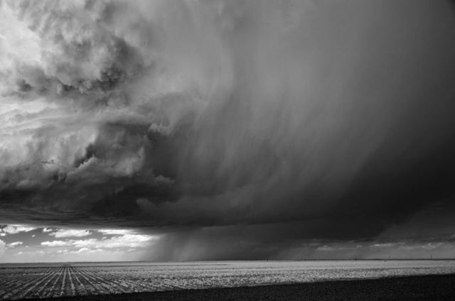 Mitch Dobrowner, 'Rain and Corn, Dumas Texas', 2009, Catherine Couturier Gallery