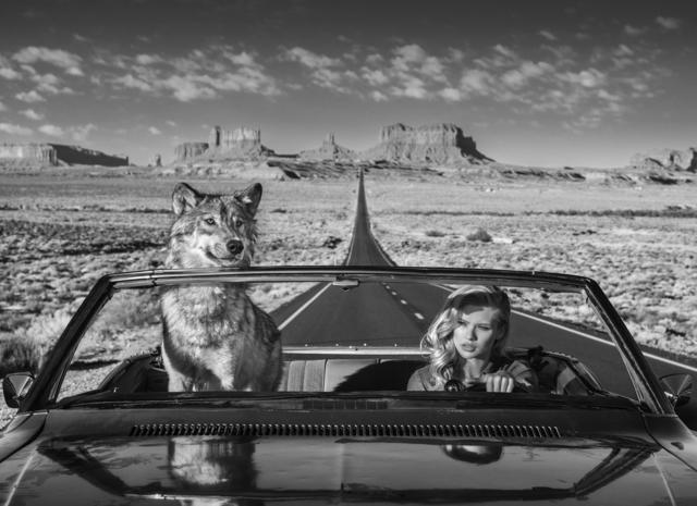 David Yarrow, 'Road Trip', 2018, Photography, Archival Pigment Print, Hilton Asmus