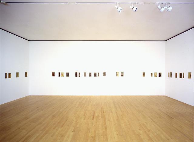 , 'Atrabiliarios,' 1992-2004, Pérez Art Museum Miami (PAMM)