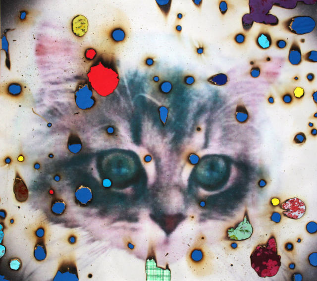 Miyoshi Barosh, 'I ♥ Kitties (blue)', ca. 2013, Drawing, Collage or other Work on Paper, Burned digital print with collage, Luis De Jesus Los Angeles
