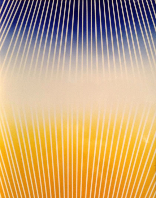 , 'Neo Opps, abstract color photography,' 2003, Hostetler Gallery
