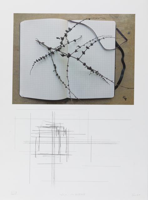 """, '""""notas para o outono"""" (col. I/V) #6/8,' 2918, Galeria Miguel Nabinho"""