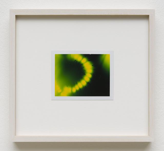 , 'Photuris #11,' 2013, Galerie Crone