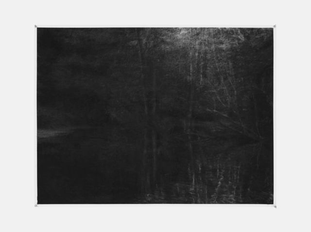 , 'Reflected Forest in Pond,' 2015, Galerie Ron Mandos