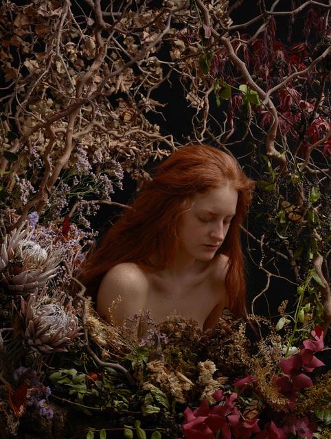, 'Nameless Flower #1,' 2014, Galerie Isabelle Lesmeister