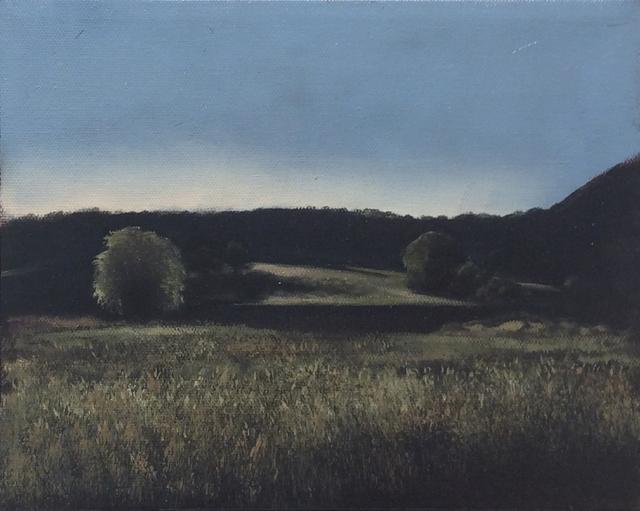 Eileen Murphy, 'Untitled Landscape II', 2018, Carrie Haddad Gallery