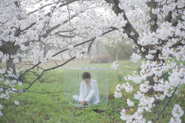 , 'Man in glass cube under the cherry tree ,' , Getty Images Gallery
