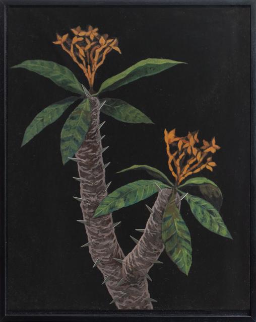 , 'Faux Paradise #11,' 2017, Richard Koh Fine Art