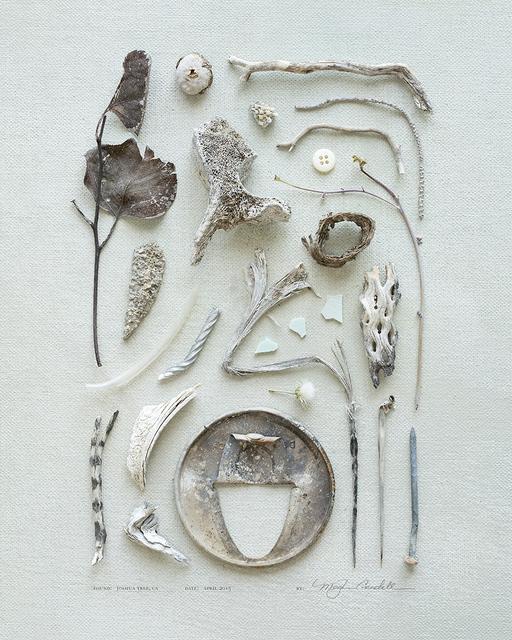 , 'Bones,' 2015, Asher Grey Gallery