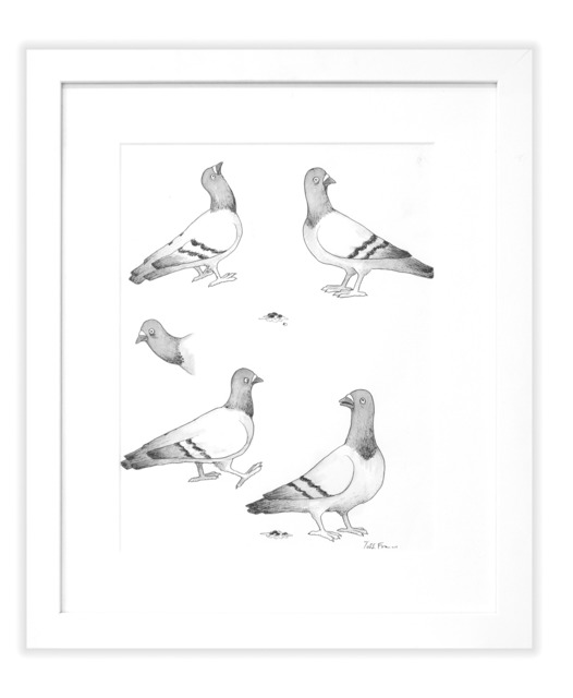 , 'B/W BOUTIQUE PIGEONS,' , Subliminal Projects