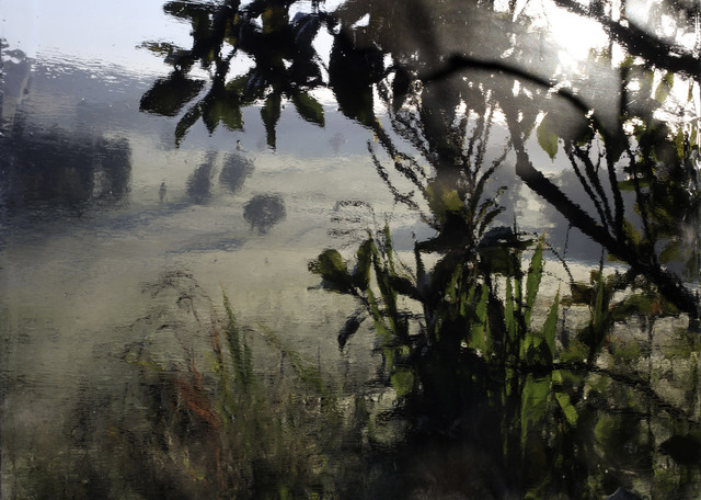 , 'October Morning in Harewood Fields,' 2015, Purdy Hicks Gallery