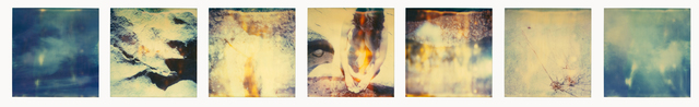 Stefanie Schneider, 'Planet of the Apes', 1999, Photography, 7 analog C-Prints, hand-printed by the artist, based on 7 Polaroids, not mounted, Instantdreams