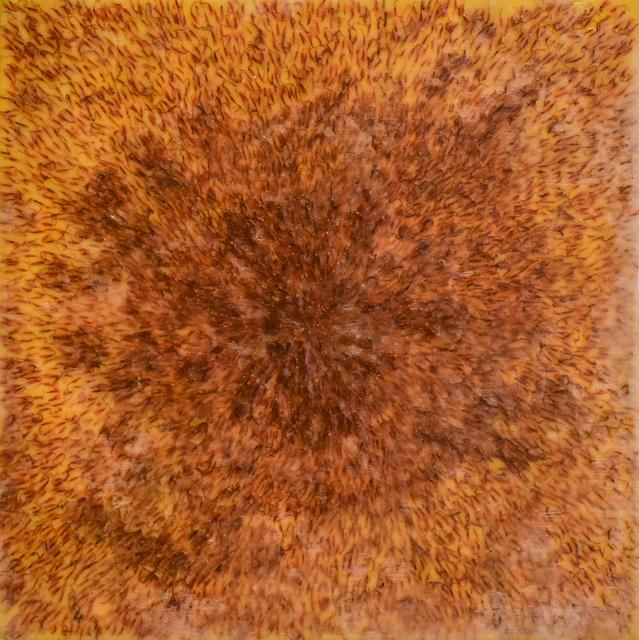 Allyson Levy, 'Safflower', 2018, Carrie Haddad Gallery