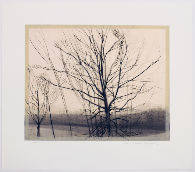 , 'The Pin Oak at the Pond,' 1986, Senior & Shopmaker Gallery