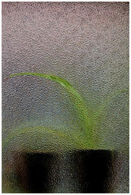 , 'Resistência,' 2015, ABACT Photo Collection