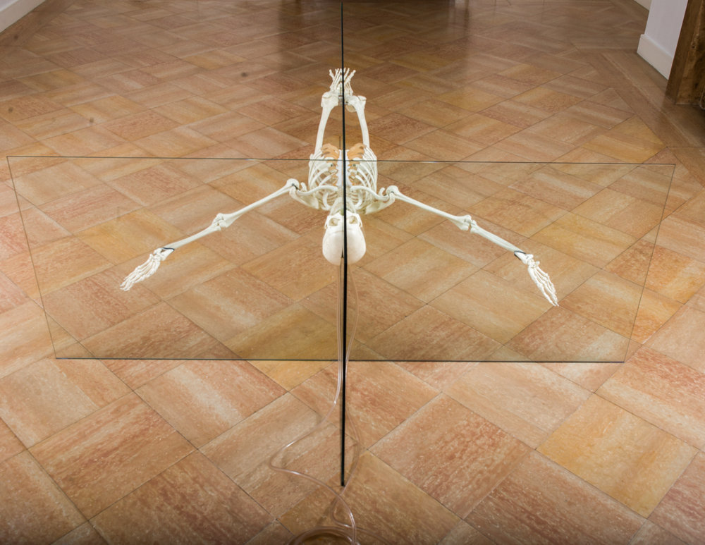 """DAMIEN HIRST """"Rehab is for Quitters"""", 1998-1999"""