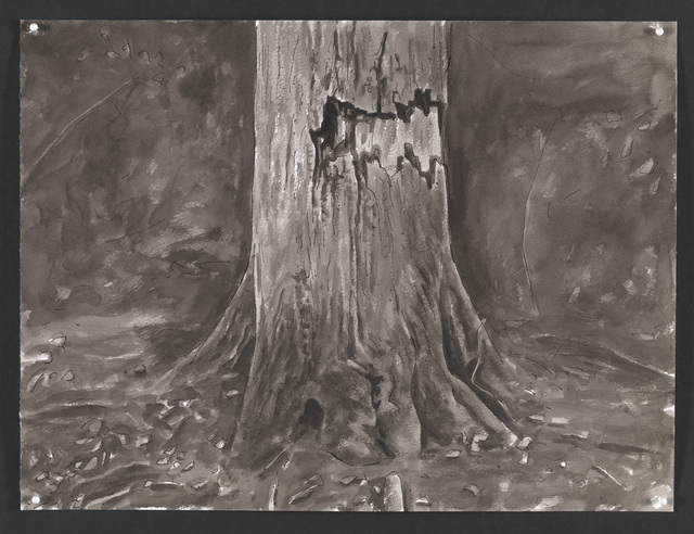 , 'Wounded Tree II ,' 2015, The National Gallery, London
