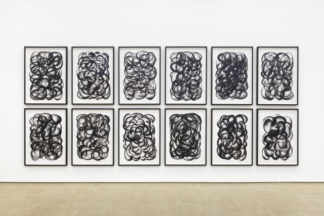 , 'Paths and Fields,' 2015, Stevenson
