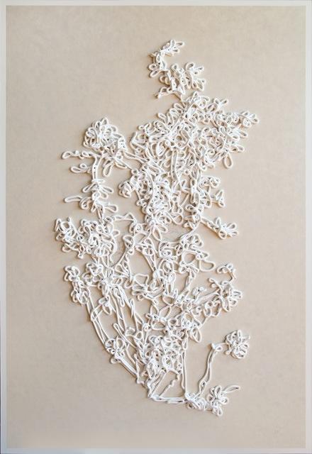 , 'White Rose ,' 2016, William Shearburn Gallery
