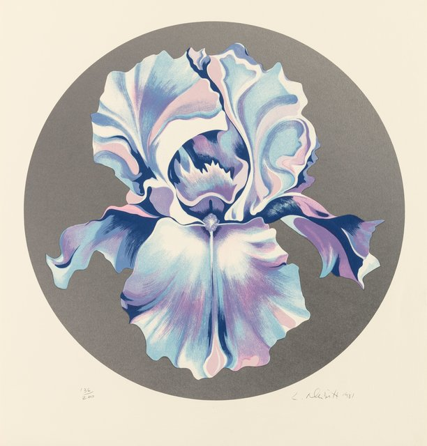 Lowell Nesbitt, 'Iris on Silver', 1981, Print, Screenprint in colors on paper, Heritage Auctions