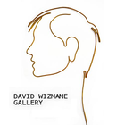 David Wizmane Gallery