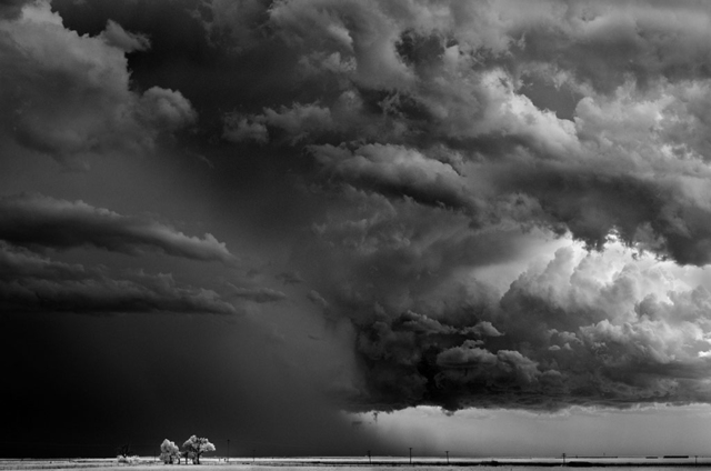 Mitch Dobrowner, 'Trees-Clouds, Texline Texas', 2009, Catherine Couturier Gallery