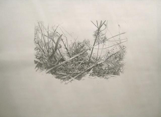 , 'Lieux de Mémoires, 34.000 Jahre Grasnarbe. Errichtung einer keltischen Höhensiedlung, 600 v.Chr., Ipf, Bopfingen, Deutschland,' 2010, Zilberman Gallery