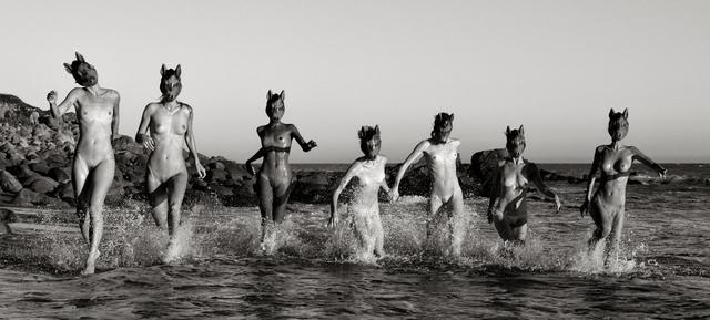 , 'Wild Horses,' 2014, Vernissage