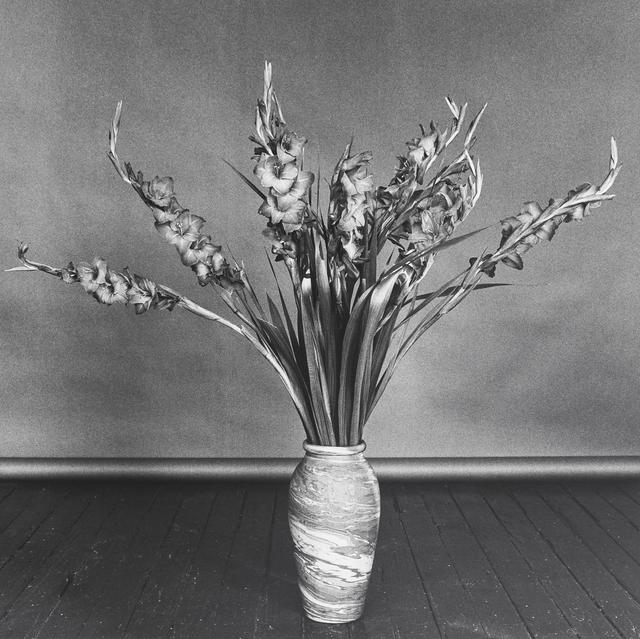 , 'Gladioli,' 1979, Mai 36 Galerie